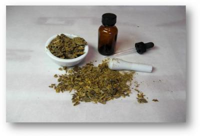 Fitoterapia 1: dalla pianta al farmaco