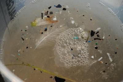 Microplastiche e macroplastiche rinvenute in mare