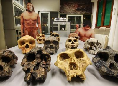 Laboratorio di Antropologia