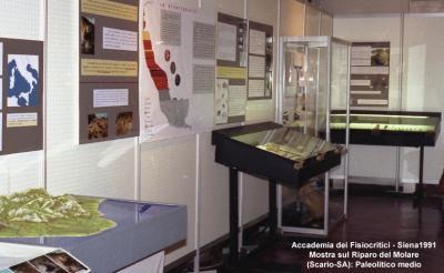 Accademia dei Fisiocritici - Mostra sul Riparo del Molare