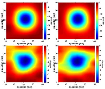 Electromagnetic induction imaging (seminario Luca Marmugi)