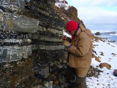 Siberia - Affioramento di arenarie e argilliti interstratificate nella Bennett Island (New Siberian Islands)