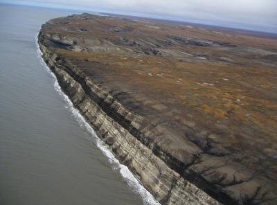 Siberia - Sezione di arenarie e livelli di carbone lungo la costa meridionale della Novaja Sibir (New Siberian Islands)